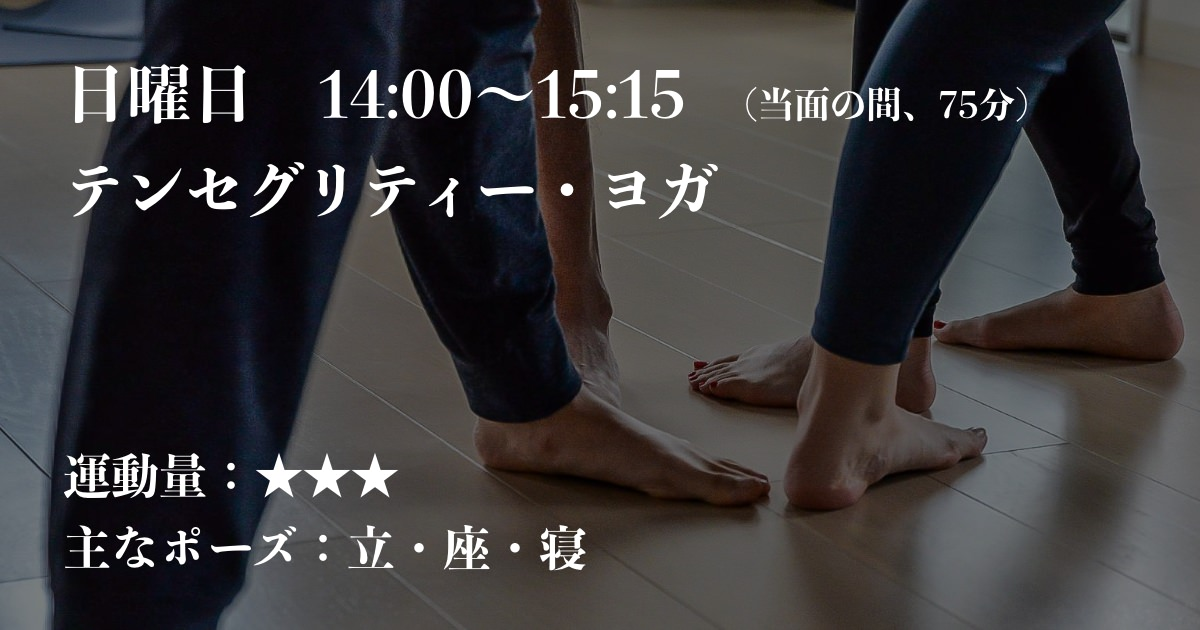 テセグリティー・ヨガ kayo udaya
